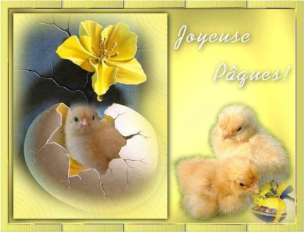 Cartes postales. Ybwm964d